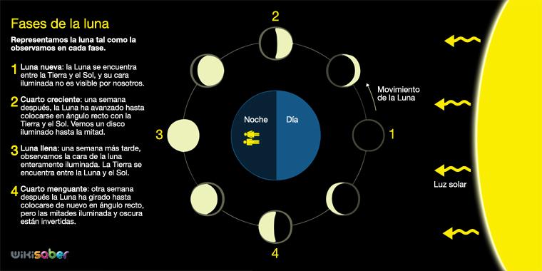 Cu nto dura cada fase lunar calendario 2018 2019 for Que dia lunar es hoy