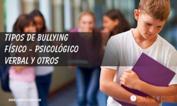 tipos de bullying